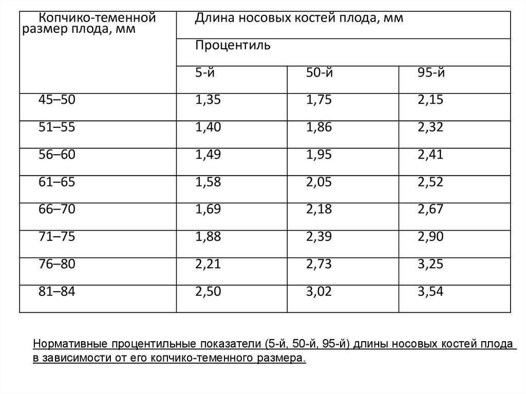 Носовая кость в 12-30 недель: таблица норм, длина и размер носовой кости по неделям беременности