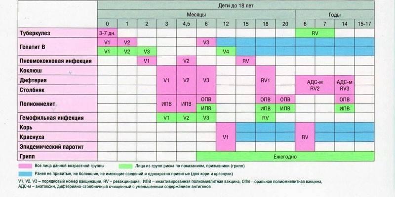 Что означает включение прививки в национальный календарь. особенности российской вакцинации