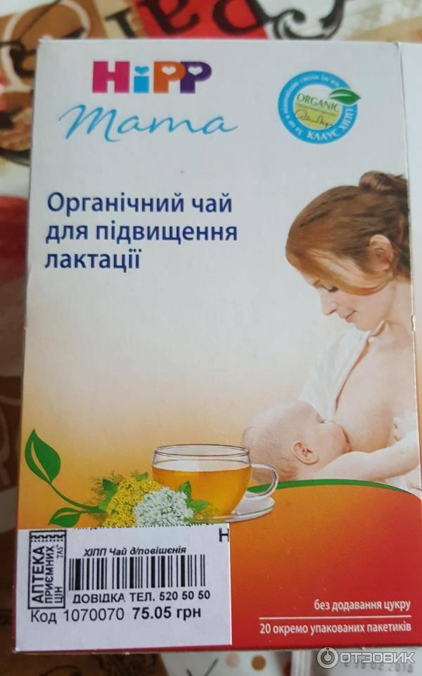 Чай для лактации: какие травы подойдут, показания к применению, правила приема