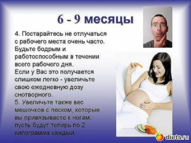 Беременная жена. инструкция по обращению для мужей.