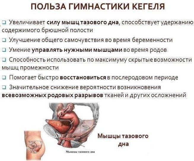 Опущение матки - симптомы, лечение опущения матки в москве, клинический госпиталь на яузе