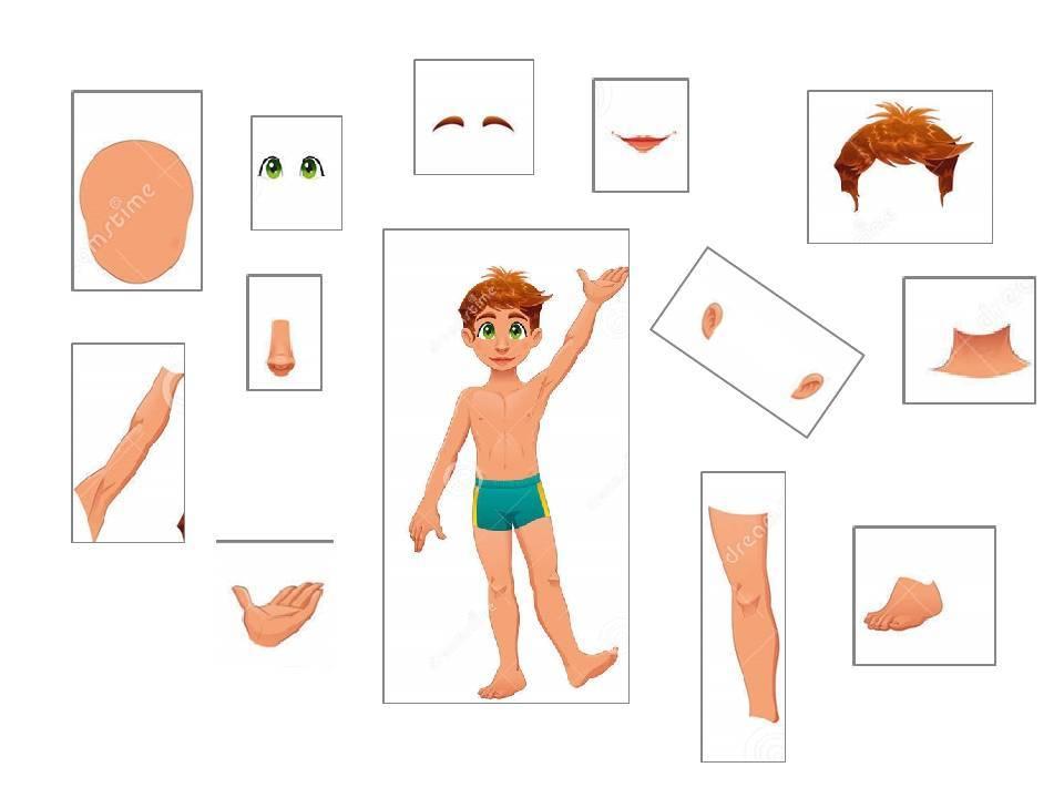 Тело человека, органы чувств. дидактические игры, страница 3