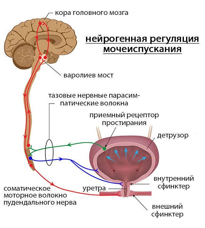 Урологические расстройства