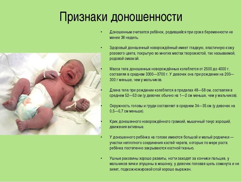 Самые маленькие: особенности развития недоношенных детей - новорожденный. ребенок до года