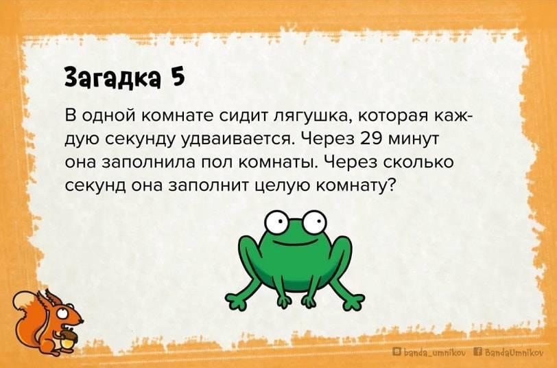 123 детские загадки с ответами: топ самых лучших