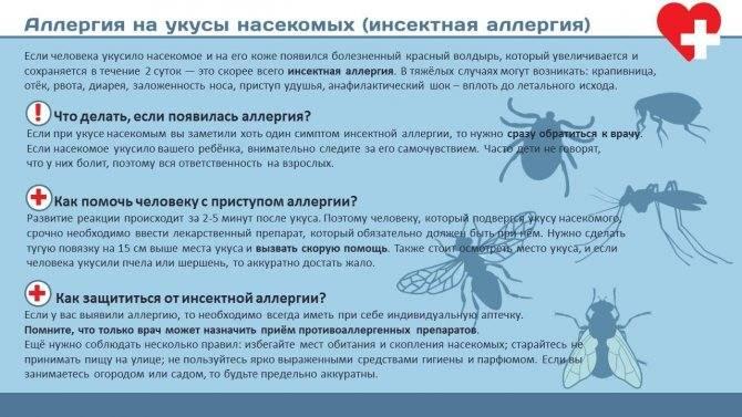 Кто может кусать ночью? распознаём насекомое по укусу