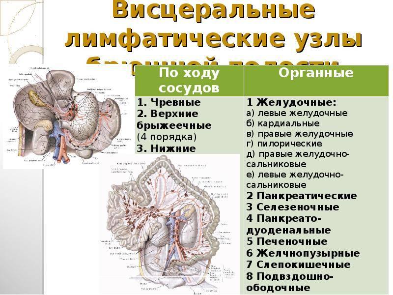 ᐈ лимфаденопатия (увеличение лимфоузлов) ~【лечение в киеве】