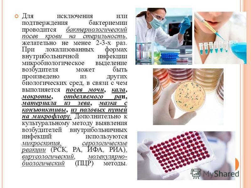Посев крови на стерильность: описание, нормы — «online диагноз»