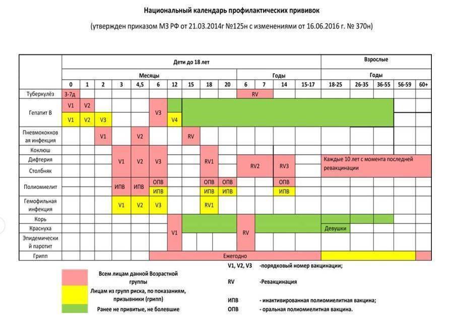 Вакцинация вроссии: календарь профилактических прививок