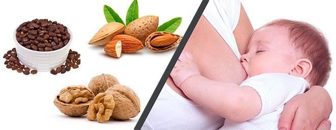 Какие орехи при грудном вскармливании можно женщинам?