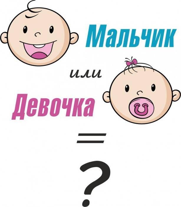 Мальчик или девочка? определяем пол ребенка по признакам. признаки пола ребенка при беременности
