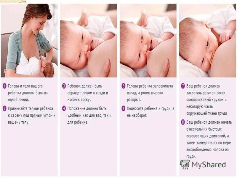 Как правильно кормить новорожденного кроху грудным молоком