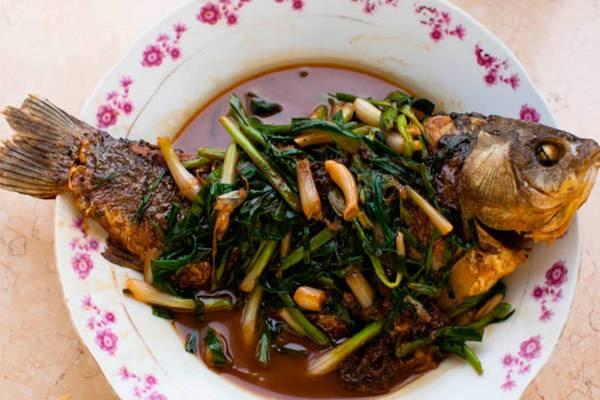 Любительницам соленой рыбы: можно ли есть её при грудном вскармливании? нюансы введения в мамино и детское питание
