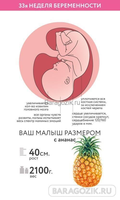 32 неделя беременности (3-й триместр) – мама и малыш