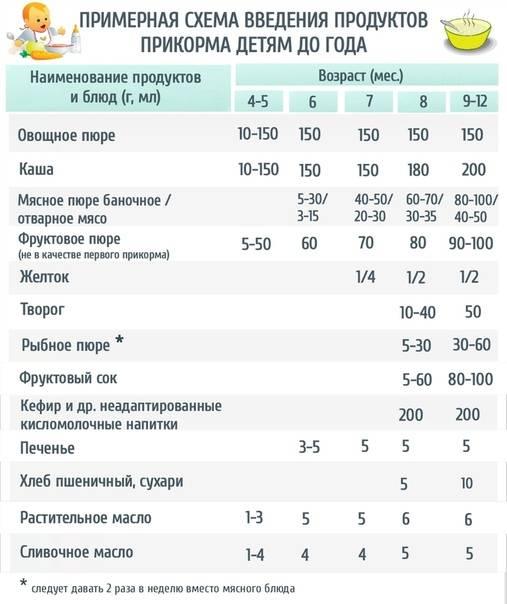 Питание по возрасту: размеры порций
