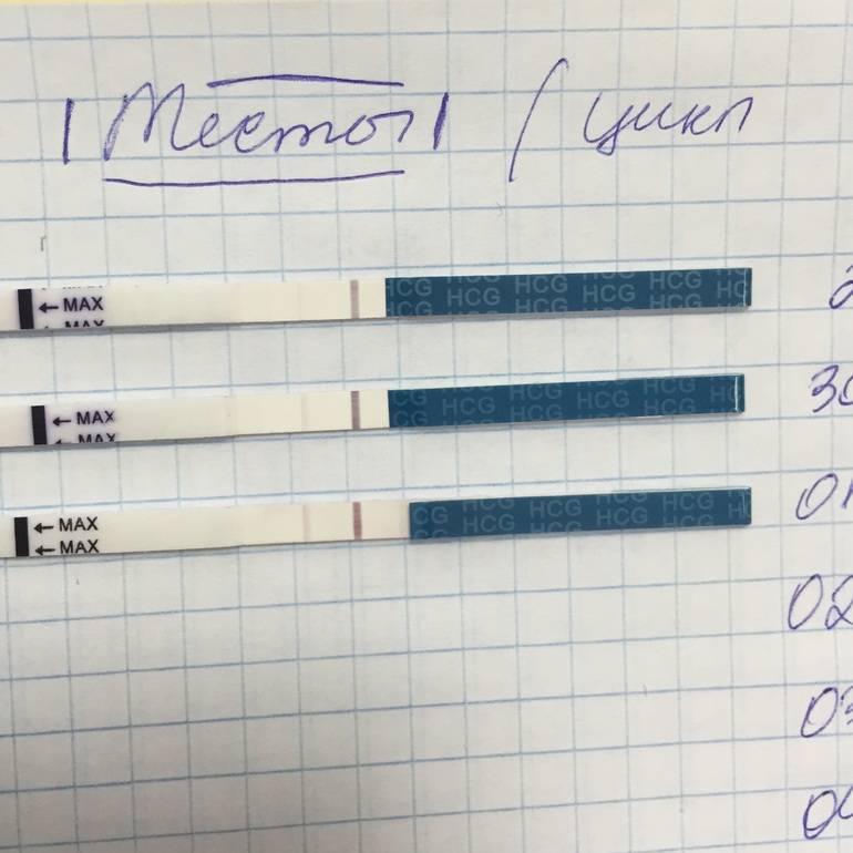Когда делать тест на беременность? | eurolab | гинекология