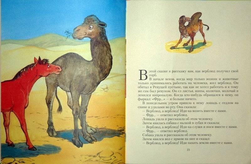 Зачем верблюду горб. как объяснить ребенку 3-5 лет зачем верблюду горбы | интересные факты