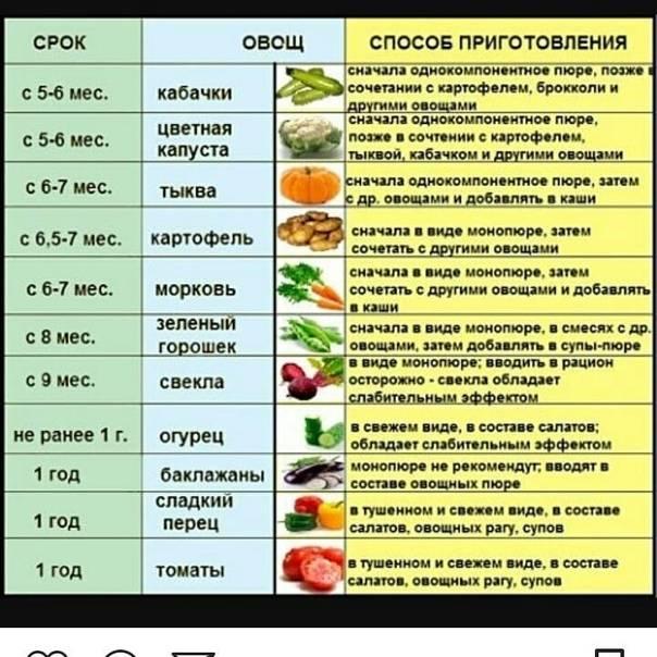 С какого возраста ребенку можно помидоры и в чем польза этих овощей?