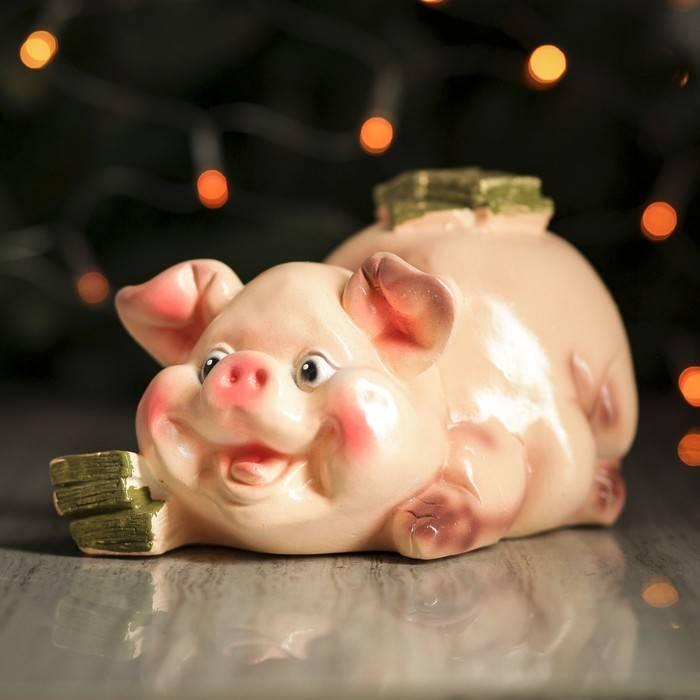 Подарки на новый 2019 год свиньи - лучшие идеи для женщины, мужчины, ребенка, коллег, родителей | праздник для всех