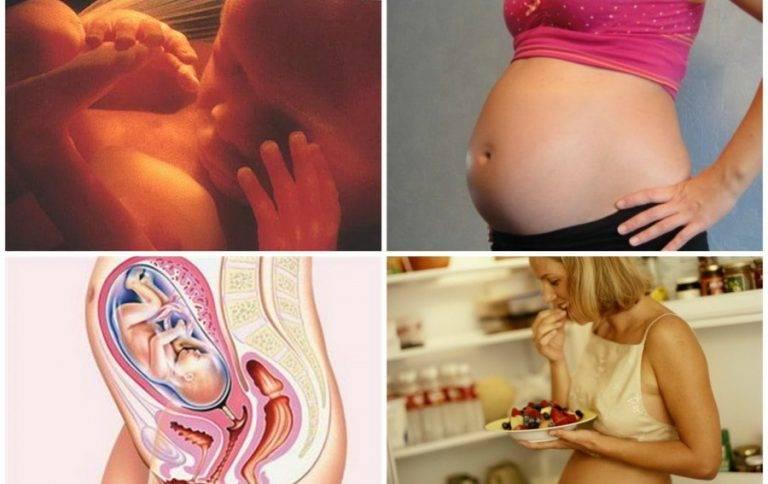 22 неделя беременности - что происходит с малышом и мамой