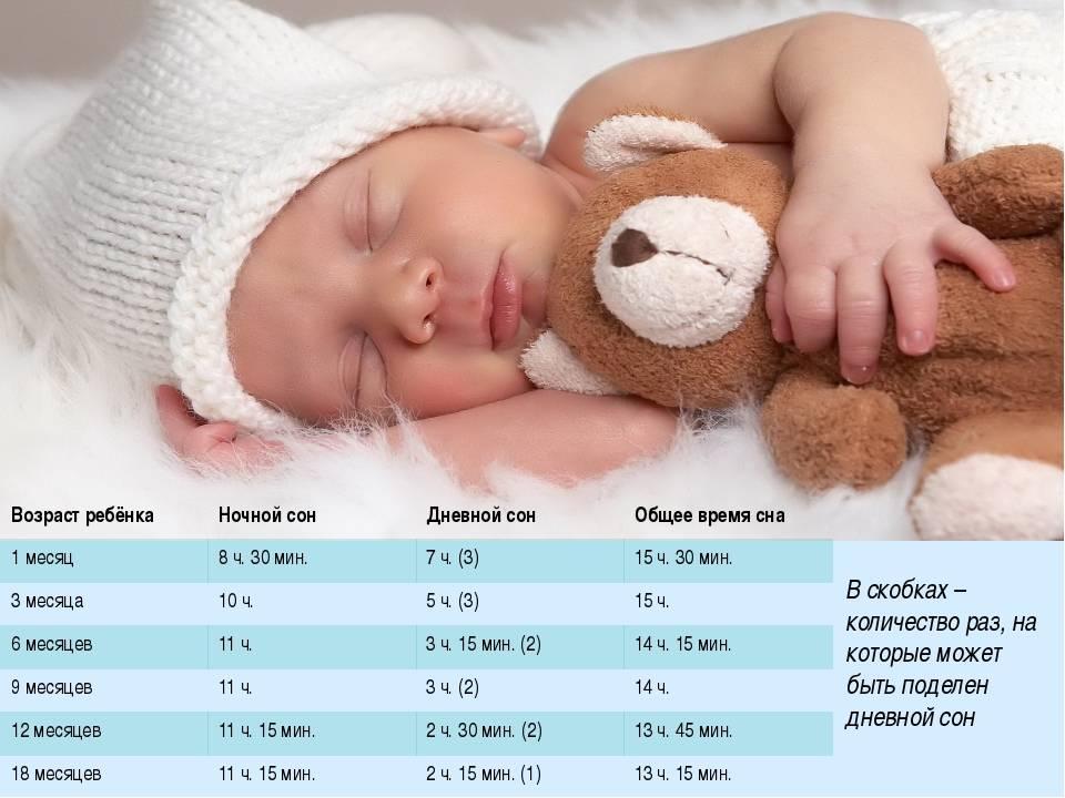 Сон новорожденного малыша: о чем нужно знать родителям