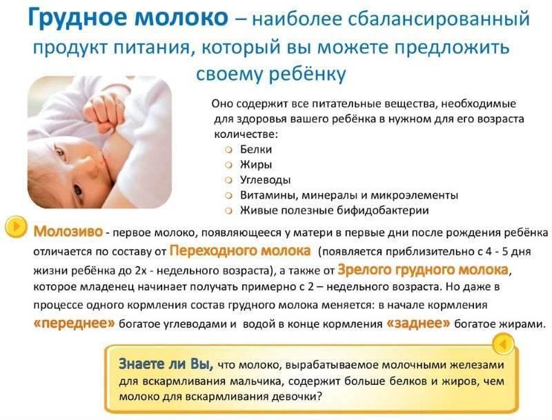 Что можно и нельзя кушать кормящей маме в первые месяцы после родов