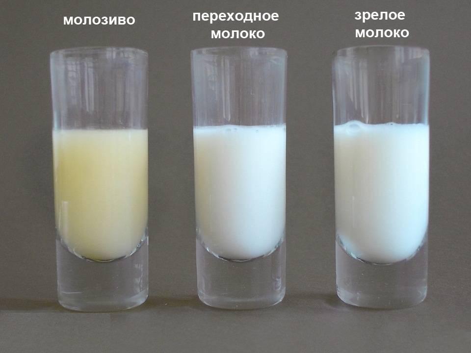 Когда после родов начинает приходить молоко