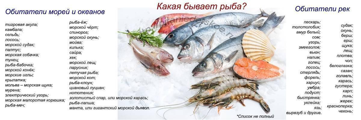 Какую рыбу можно при грудном вскармливании: можно ли красную, соленую