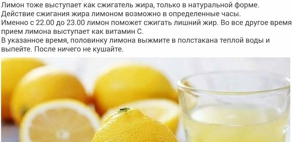 Лимон при кормлении грудью