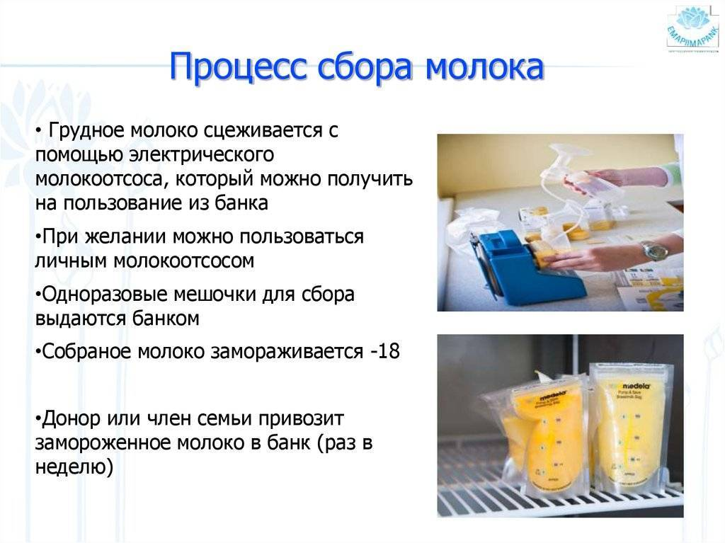 Анализ грудного молока на стафилококк