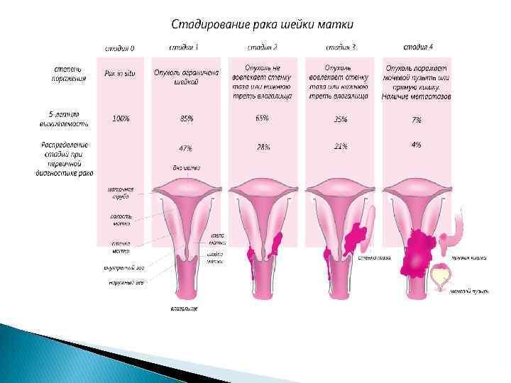 Подготовка шейки матки к родам и родовозбуждение