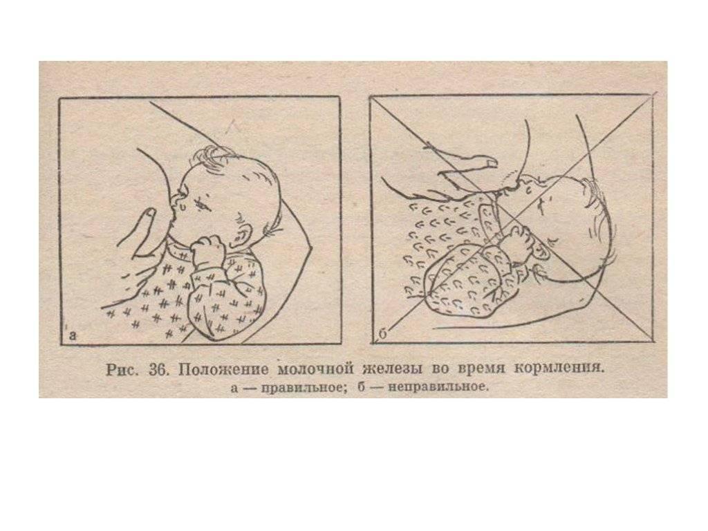 Как правильно подготовить грудь к кормлению, основные рекомендации