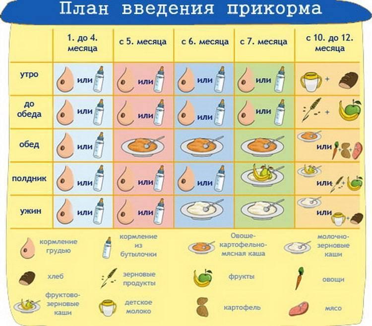 Готовим первый суп для первого прикорма ребенка