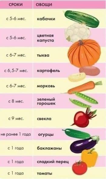 С какого возраста можно давать ребенку свеклу: польза и вред овоща