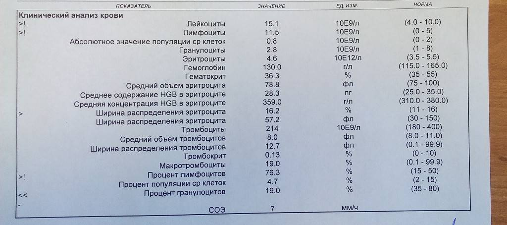 Анализ крови на холестерин - липидный профиль