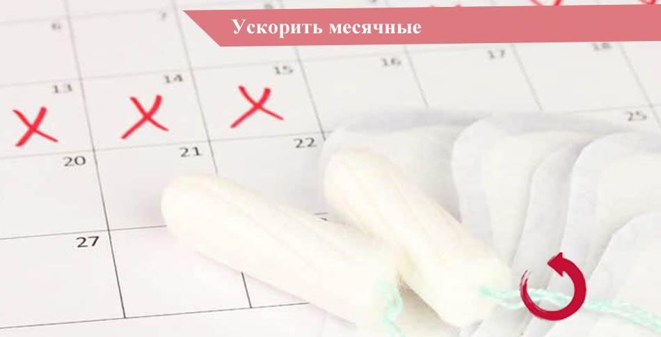 Обильные месячные - что делать| интернет-портал гинекологи москвы