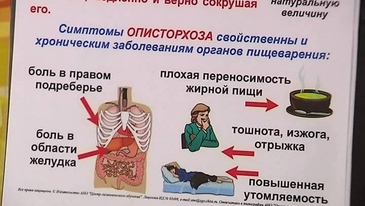Острый описторхоз