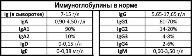 Анализы на иммуноглобулин – обязательная часть обследования при аллергии и анемии