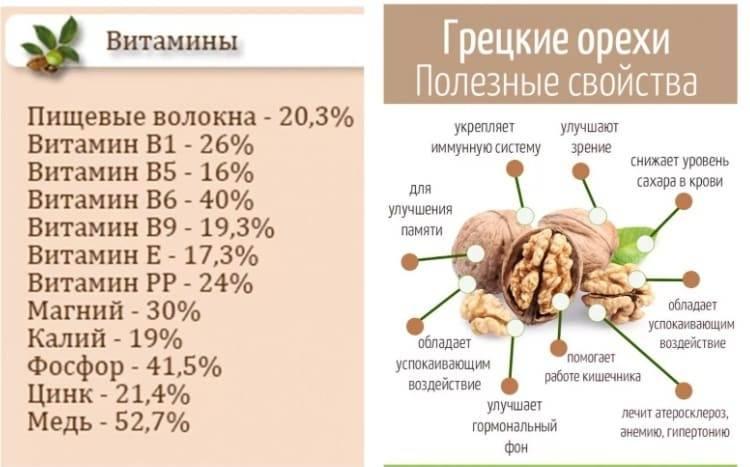 Грецкие орехи - польза и вред любимого плода + видео