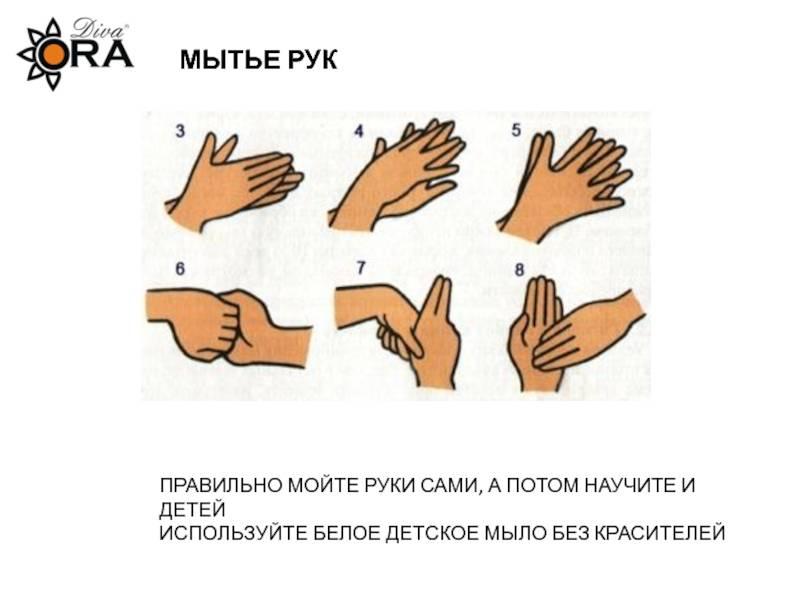 Конспект открытого занятия «научим неумейку мыть руки». воспитателям детских садов, школьным учителям и педагогам - маам.ру