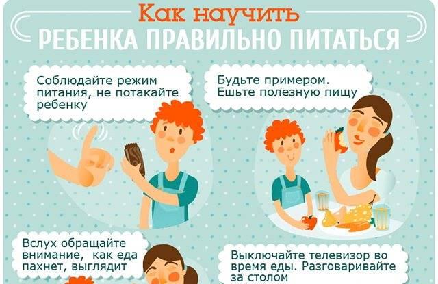 """Как научить ребенка любить здоровую еду: 9 способов — мау """"дзол """"искорка"""""""