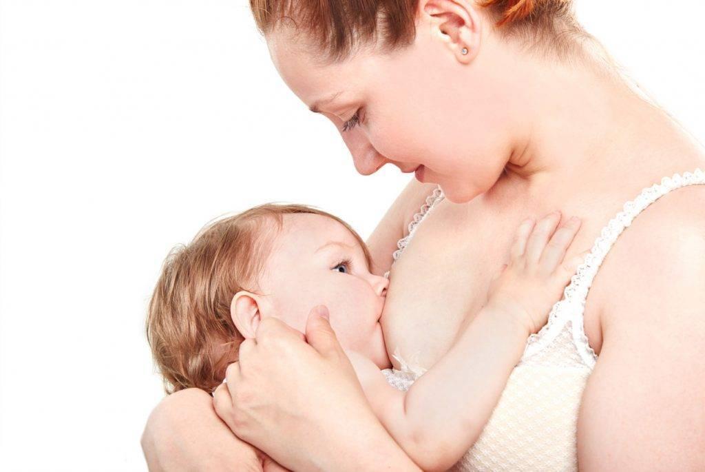 Как подготовиться к грудному вскармливанию? готовим грудь к кормлению и приобретаем необходимые вещи.
