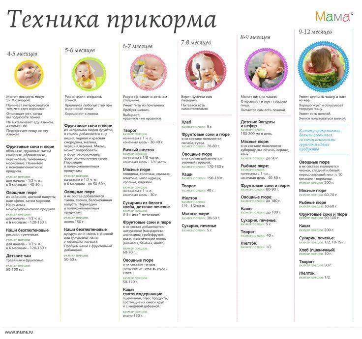 Прикорм ребенка - таблица прикорма детей до года на грудном вскармливании и искусственном | азбука здоровья