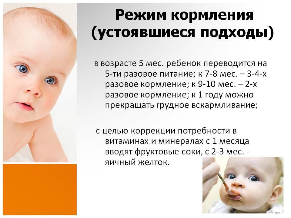 Как долго кормить ребенка грудным молоком