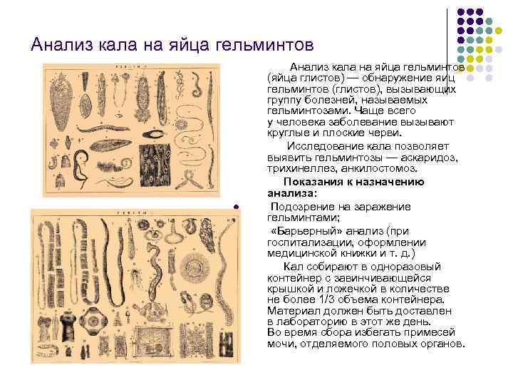 Исследования кала - копрограмма, анализ на скрытую кровь, анализ на гельминтов. где сделать платный срочный анализ кала в москве?