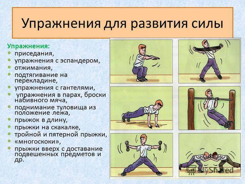 11 лучших упражнений на выносливость :: здоровье :: рбк стиль