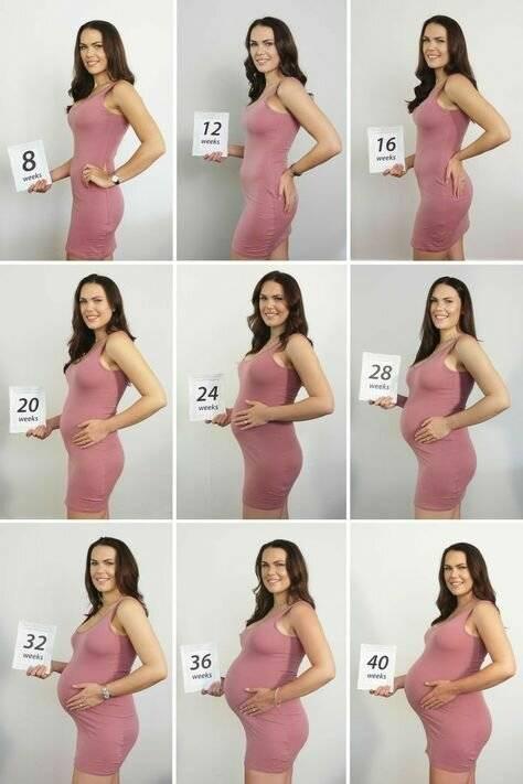 Этапы беременности - смотреть видео