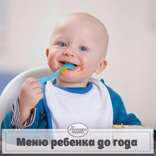 Меню на каждый день для детей от 6 месяцев до года