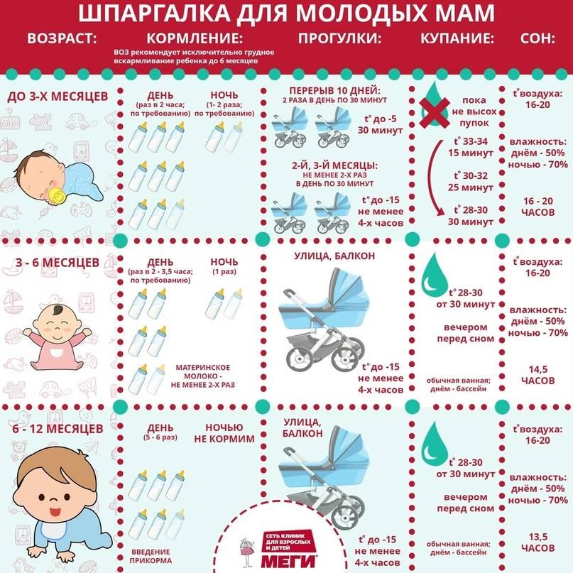 Развитие ребенка в 1 год и 3 месяца: навыки, умения, режим дня
