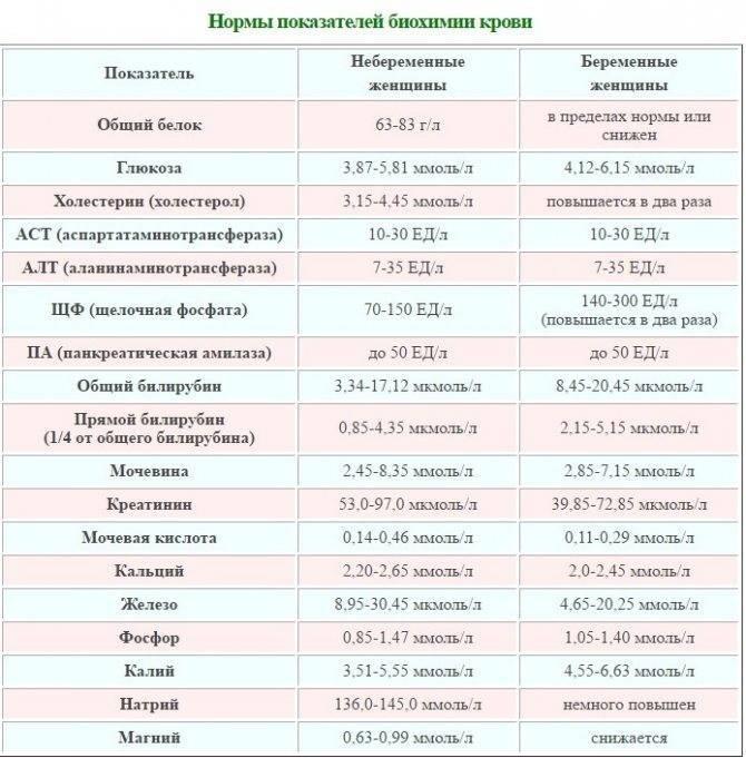 Анализ крови: общий, биохимический, иммунологический, гармональный